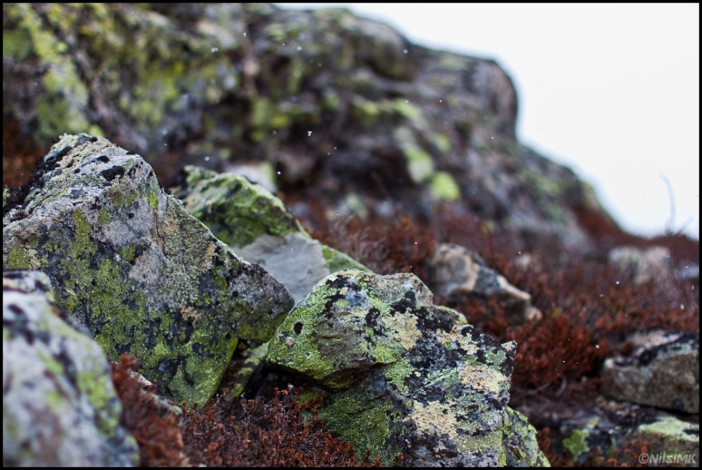 Snow flakes againts rocks.